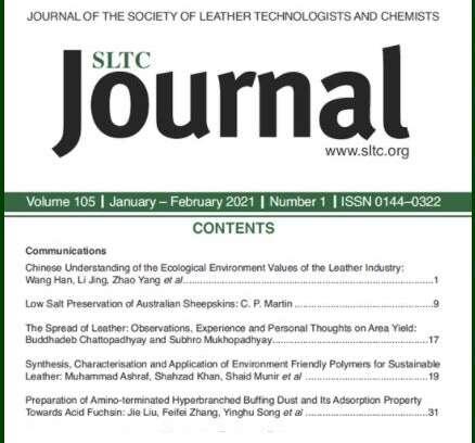 Sintesi e applicazione di un polimero ecofriendly per la produzione di pelle sostenibile