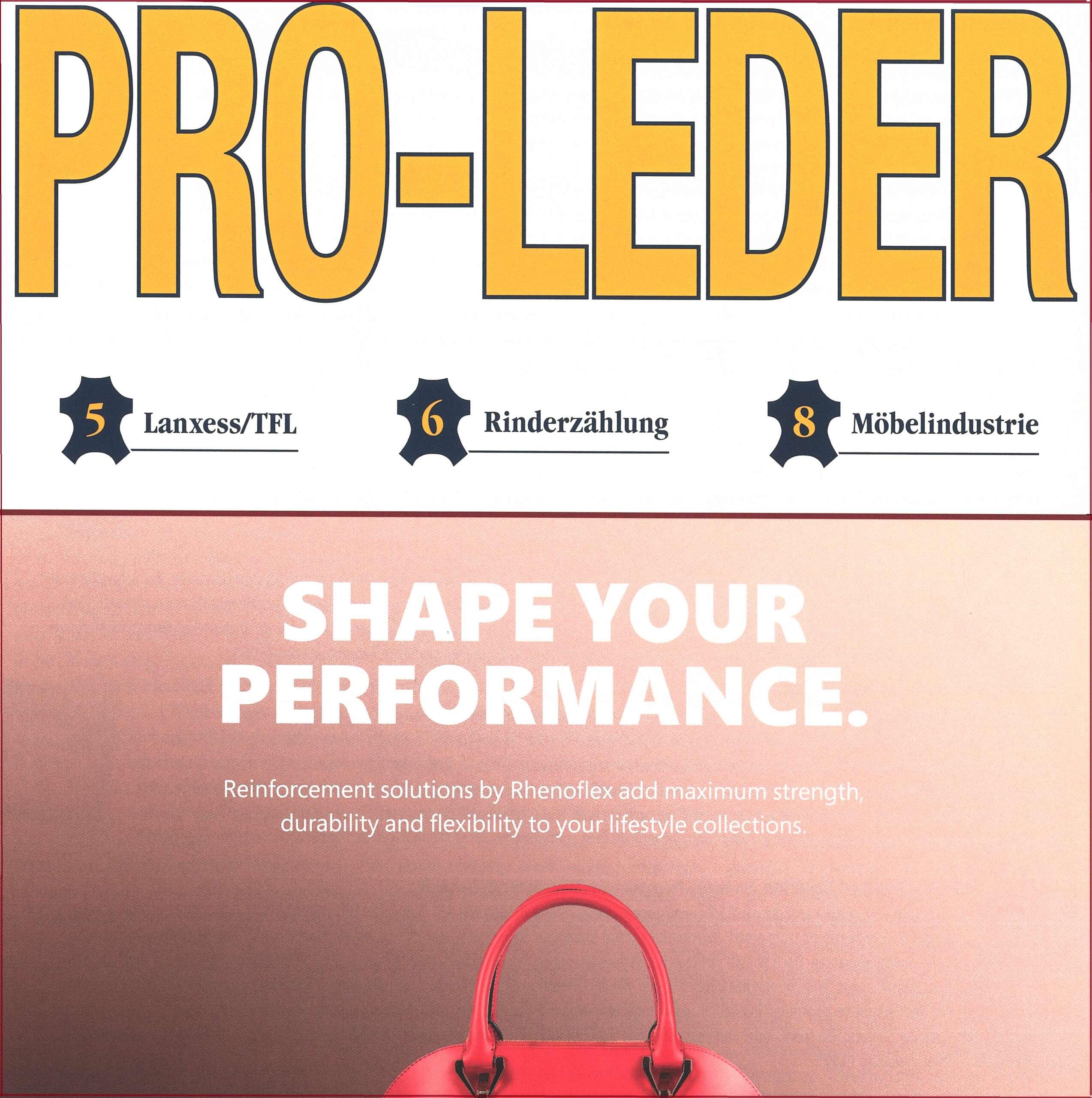 """Rivista """"Pro-Leder"""" edizione di ottobre 2020"""
