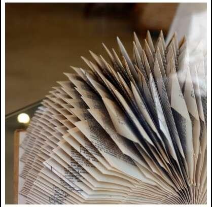 """La Biblioteca della SSIP accede al """"Fondo emergenze istituzioni culturali"""""""