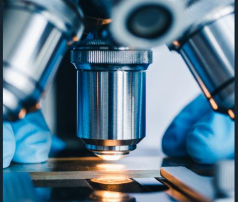 Soluzioni tradizionali e innovative per il monitoraggio, la prevenzione e il contrasto allo sviluppo microbico nei cuoi